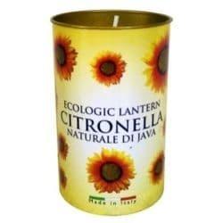Price's Candles Citronella Fragrant Lantern